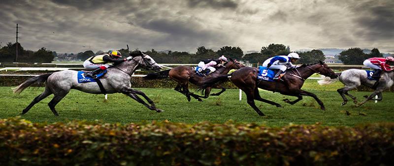 Horse Racing - Top 5 jockeys