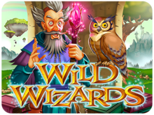 Wild Wizards RTG